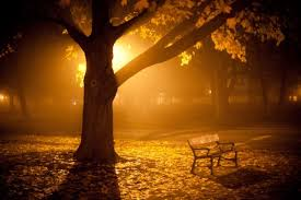 autum park bench