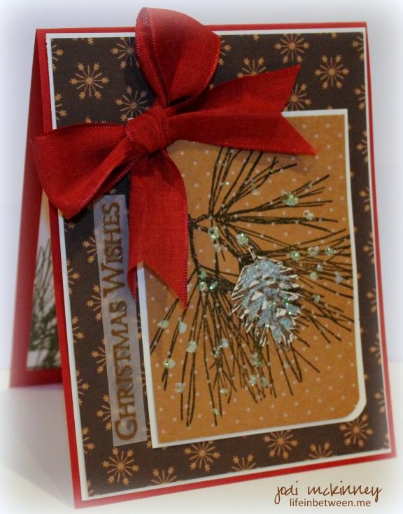 ornamental pine christmas pp219 2