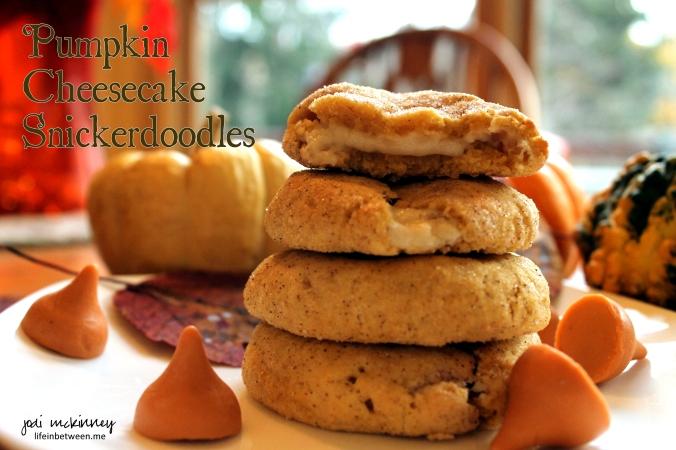pumpkin cheesecake snickerdoodles cover