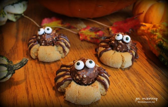 spider cookies 2