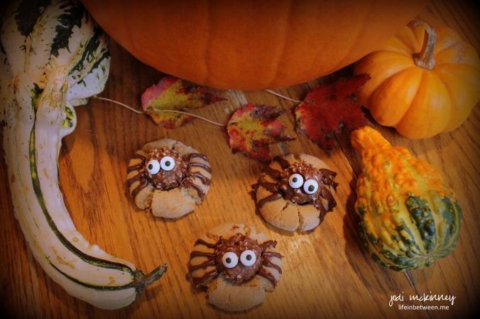 spider cookies 3