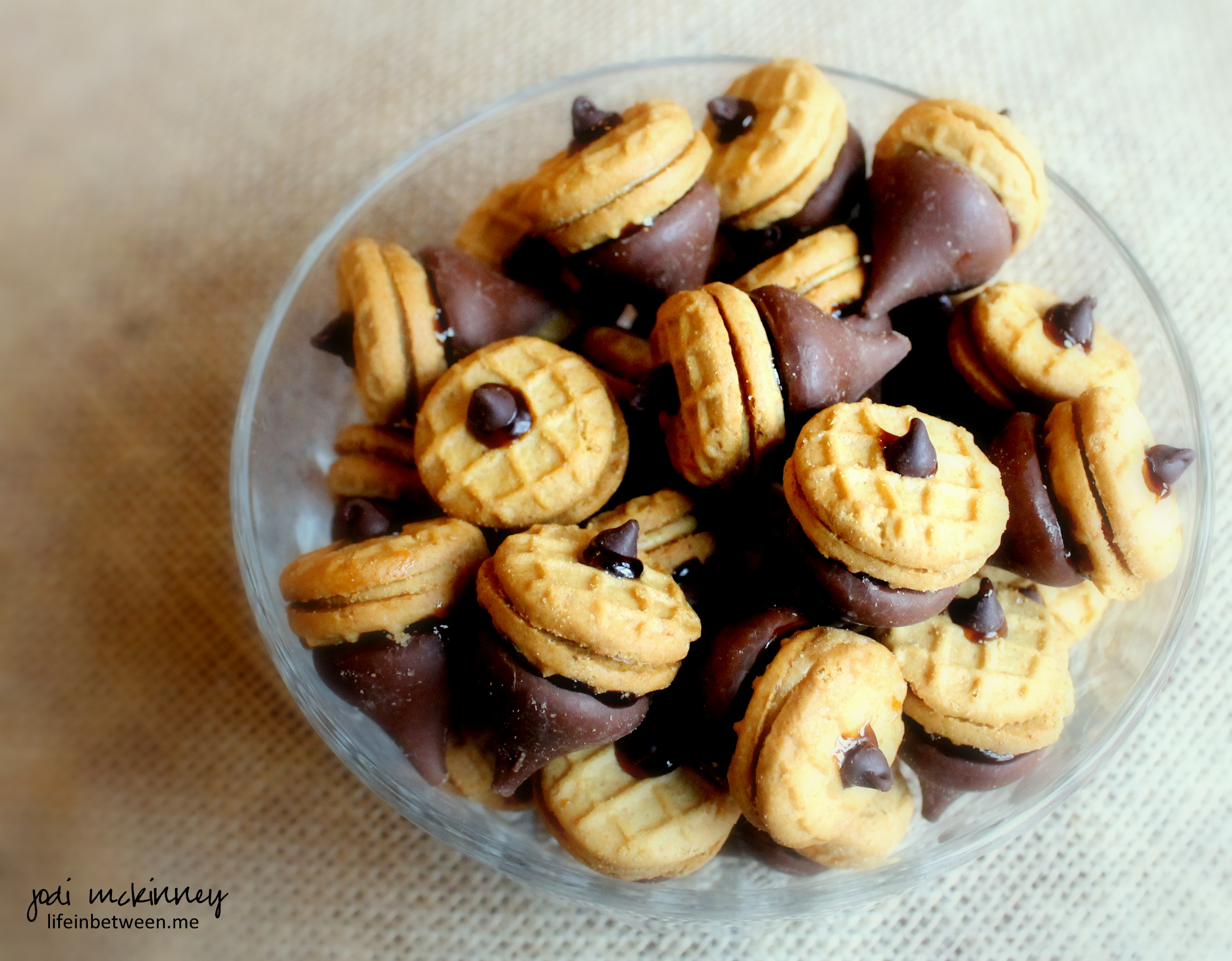 Chocolate Peanut Butter Acorn Cookies | life in between