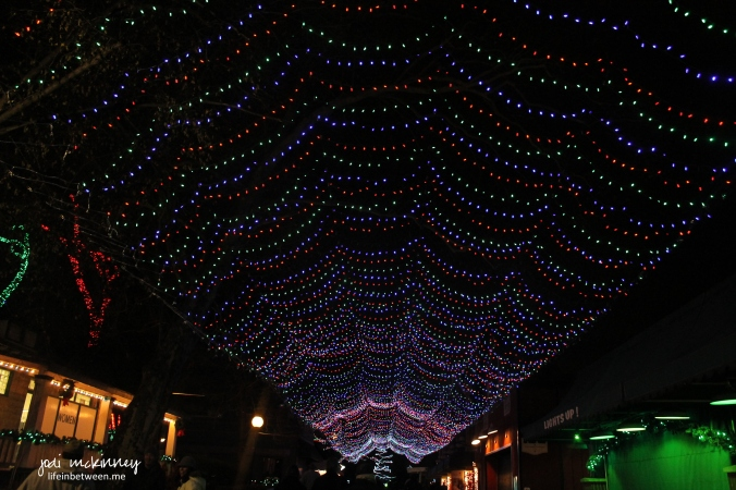 kennywood lights 1