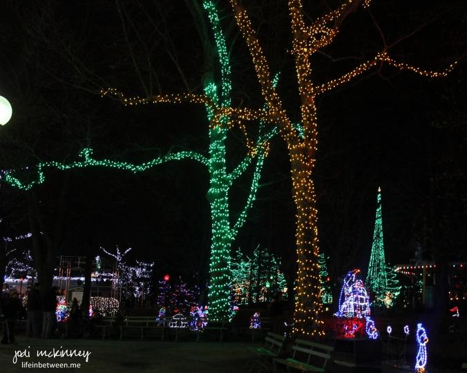 kennywood lights 3