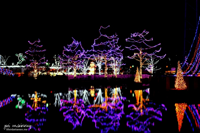 kennywood lights 6