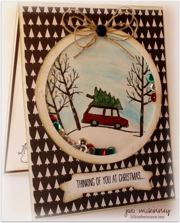 White Christmas Shaker Card