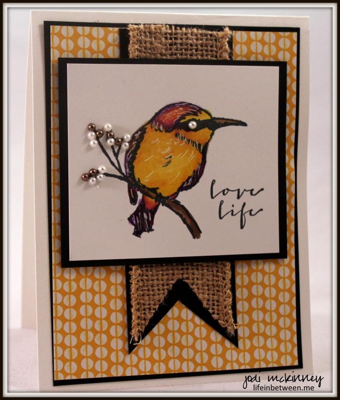 love life bird yellow