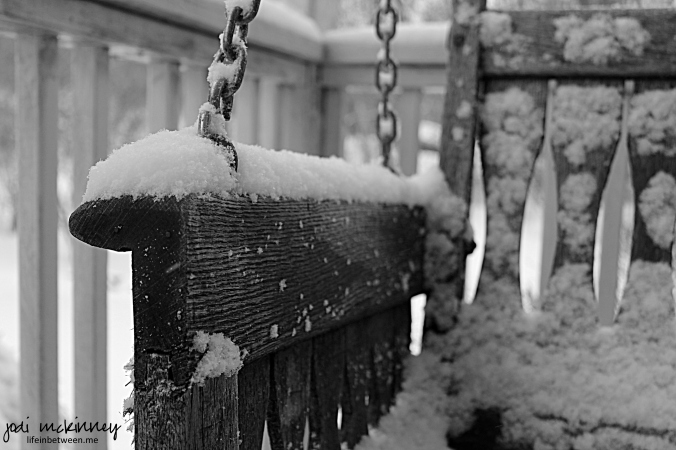 snowy swing black and white