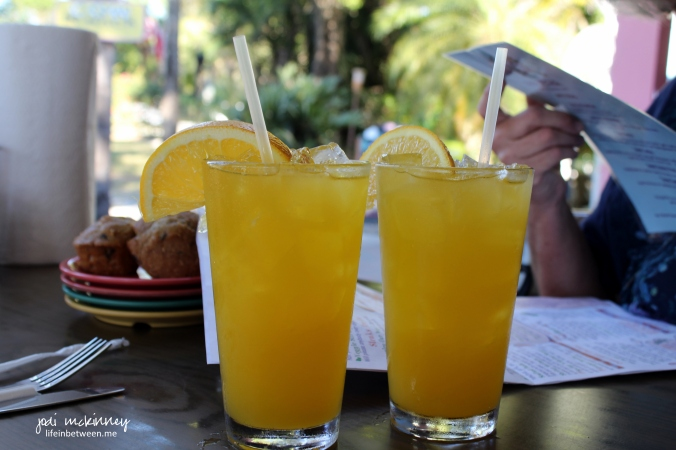 sanibel island cow white mango sangria
