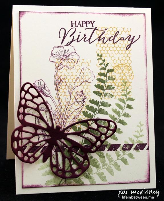 butterfly birthday 1