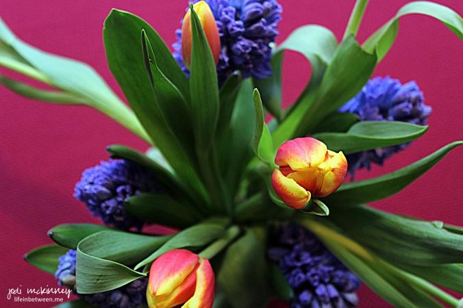 Fresh tulips and hyacinths