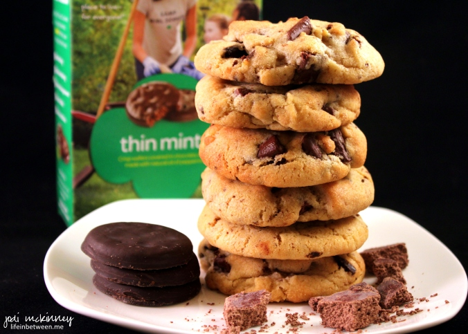 Girl Scout Thin Mint Chocolate Chip Cookies 1