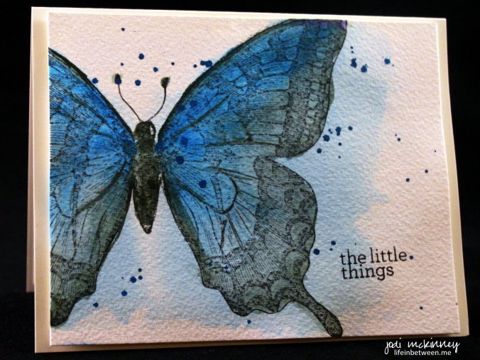 PP241 Clean and Simple Watercolor Butterfly