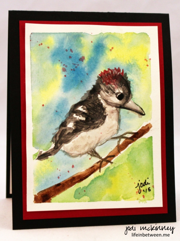 First Bird Drawing and Watercolor Downy Woodpecker