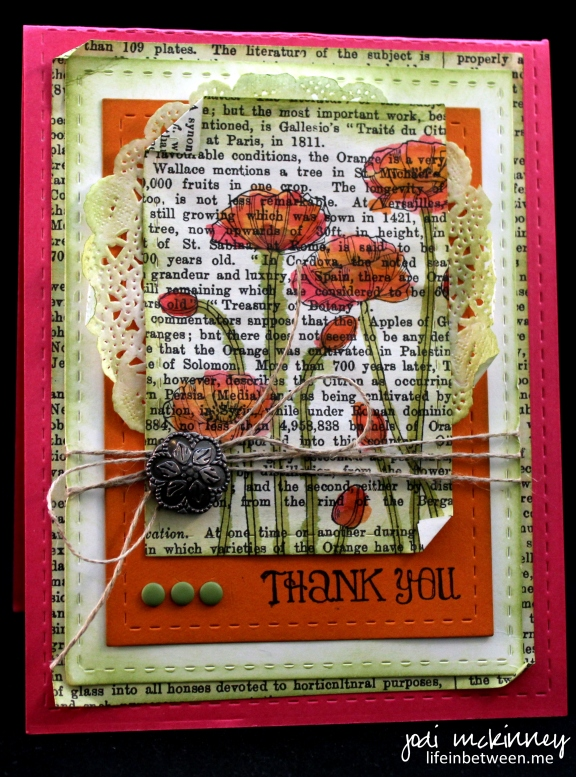 PP245 Pleasant Poppies Lots of Thanks