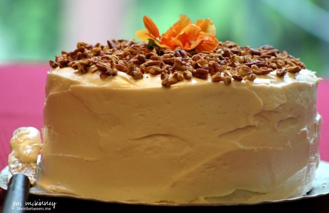 hummingbird cake 6