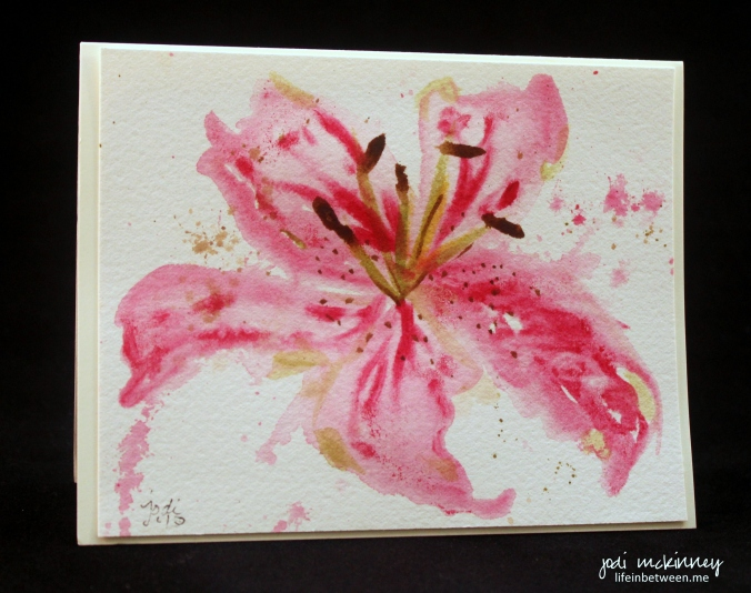 stargazer lily 4
