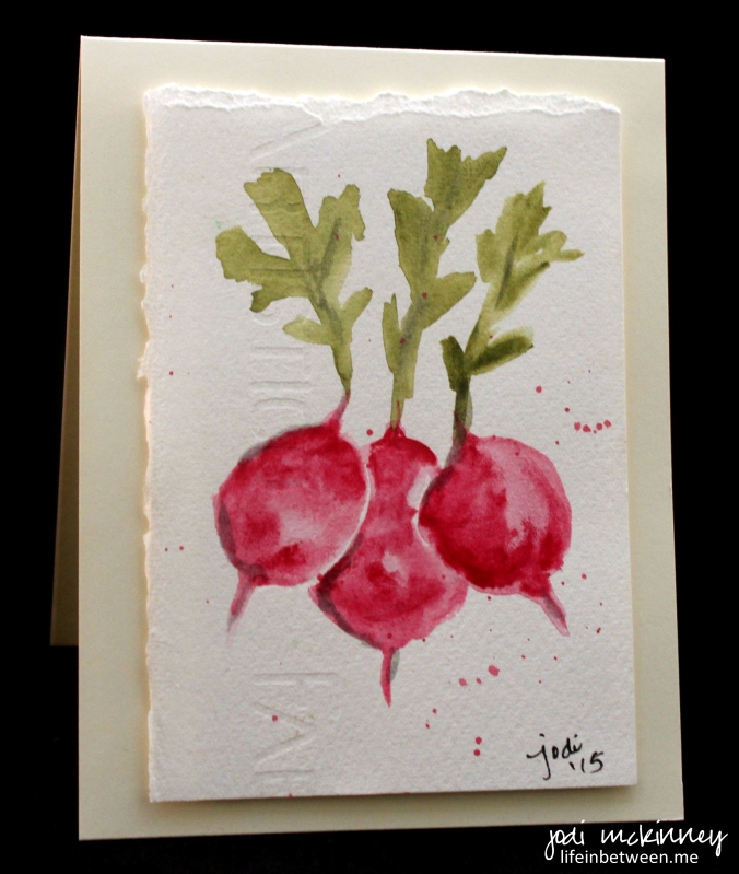 vegetable card radishes
