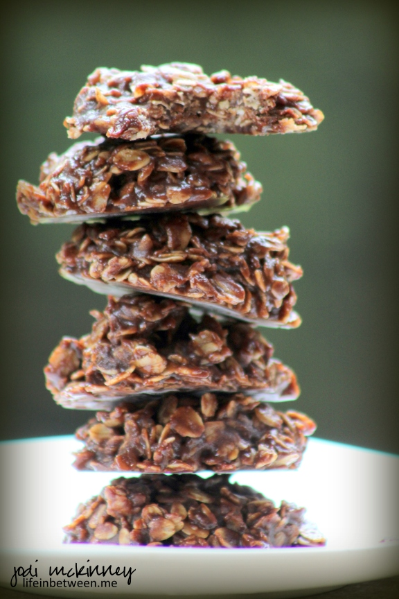 almost sugar free chocolate no bake cookies 1