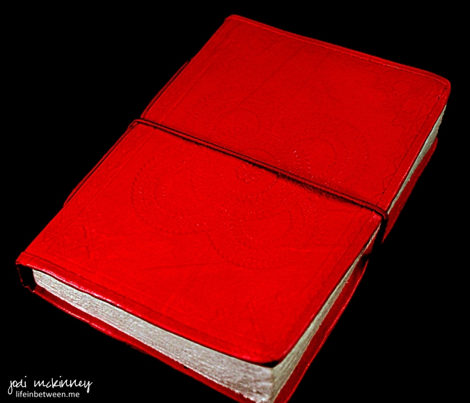 journal red leather cover
