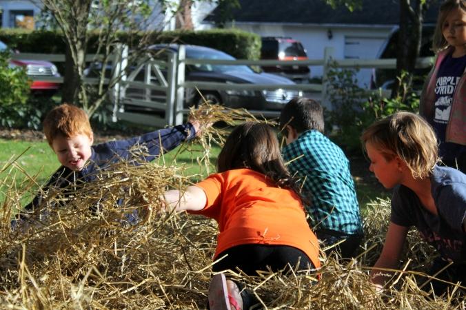 kf kids hay