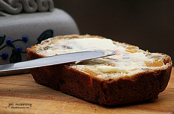 apricot nut bread slice