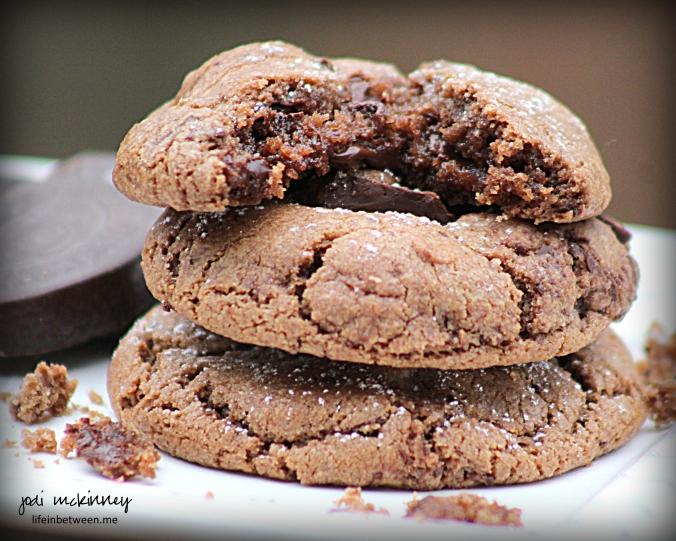 Chocolate Orange Crinkle Cookies 2