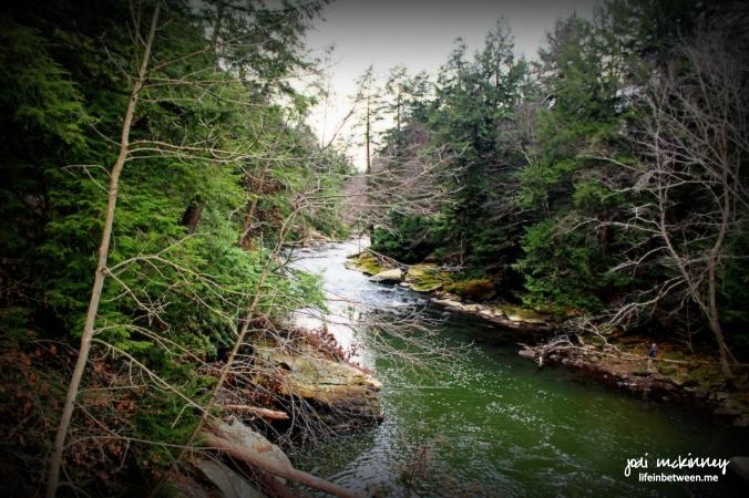 slippery rock creek 11 2015