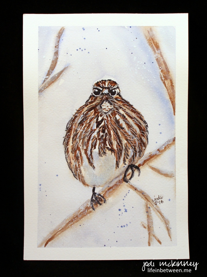 watercolor song sparrow 01 2016