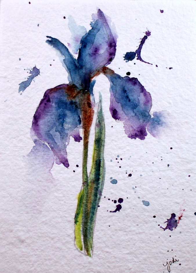 blue purple iris watercolor