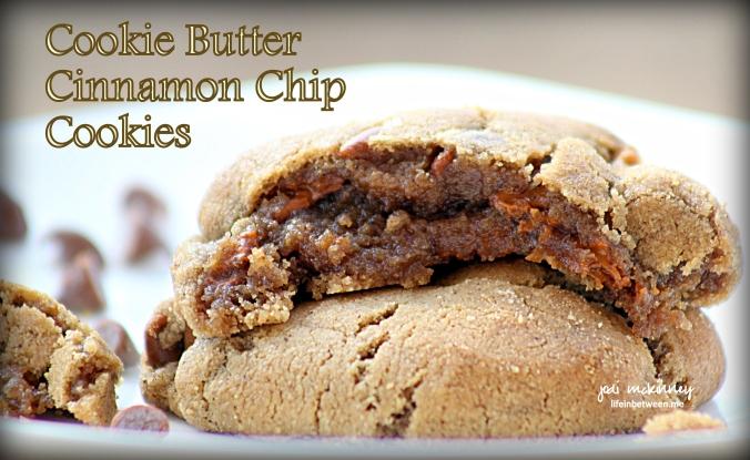 cookie butter cinnamon chip cookies