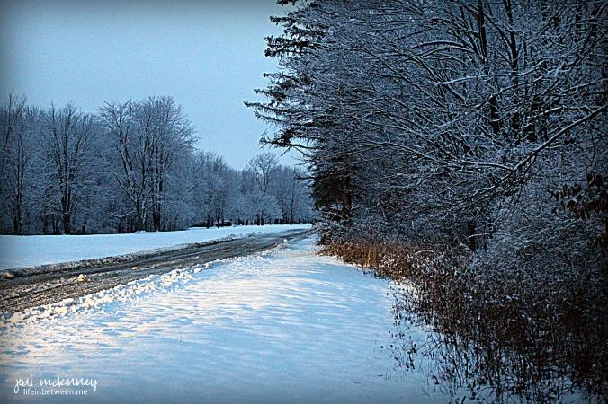 february snowy driveway