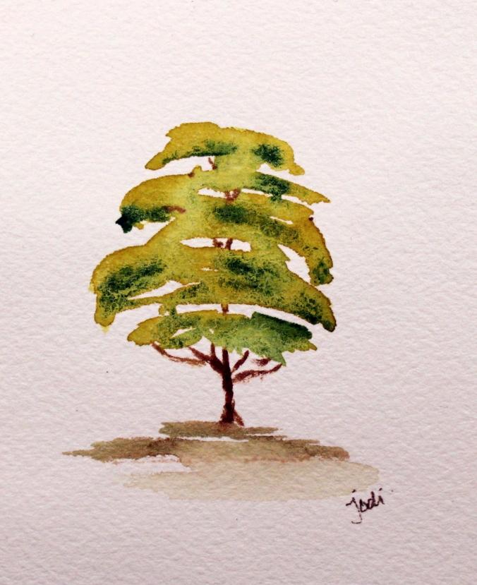 tree study rekab