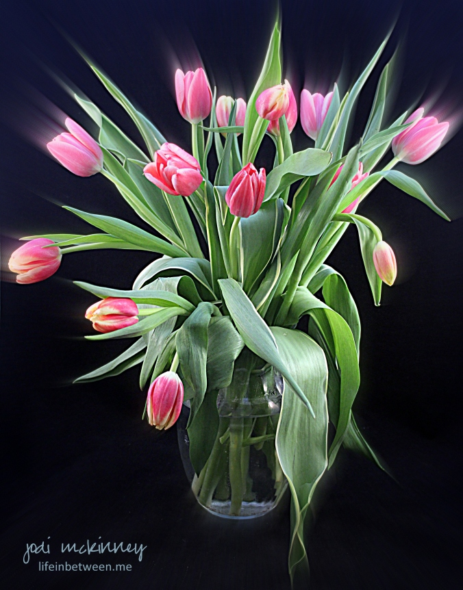 vase of pink tulips