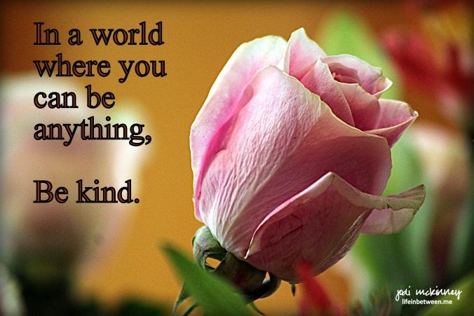 Be Kind Rose
