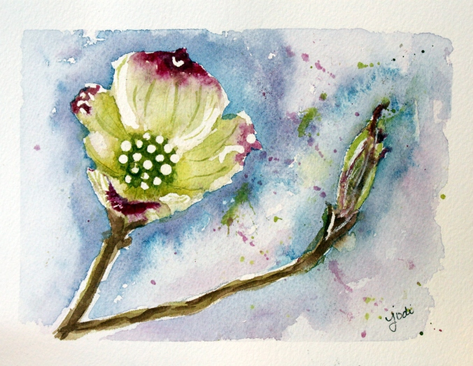 dogwood blossom watercolor