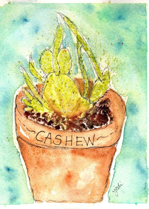 Cashew the Cactus Watercolor 5x7