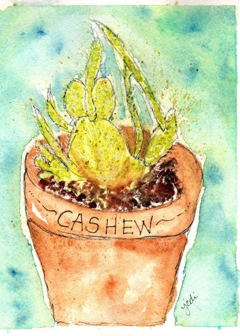 Cashew the Cactus Watercolor 5x7