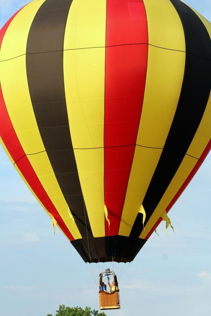Hot Air Balloon WPA Balloonfest 9