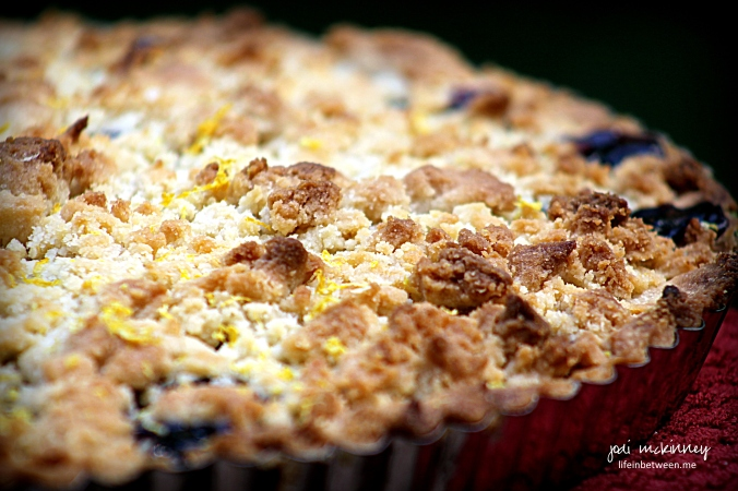 blueberry shortbread tart 3