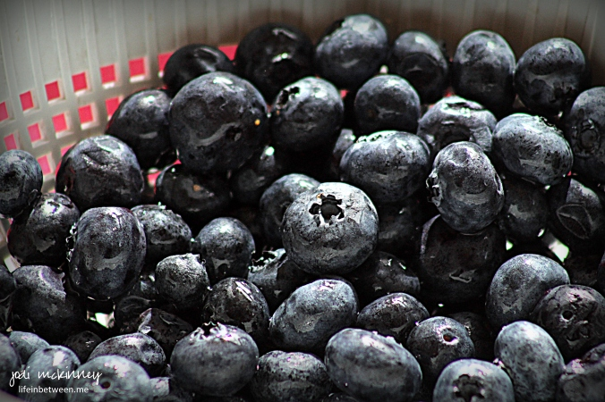 Peach Blueberry Greek Yogurt Cake fresh blueberries