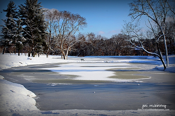 snowy-lake-and-bench-mars-pa-december-2016