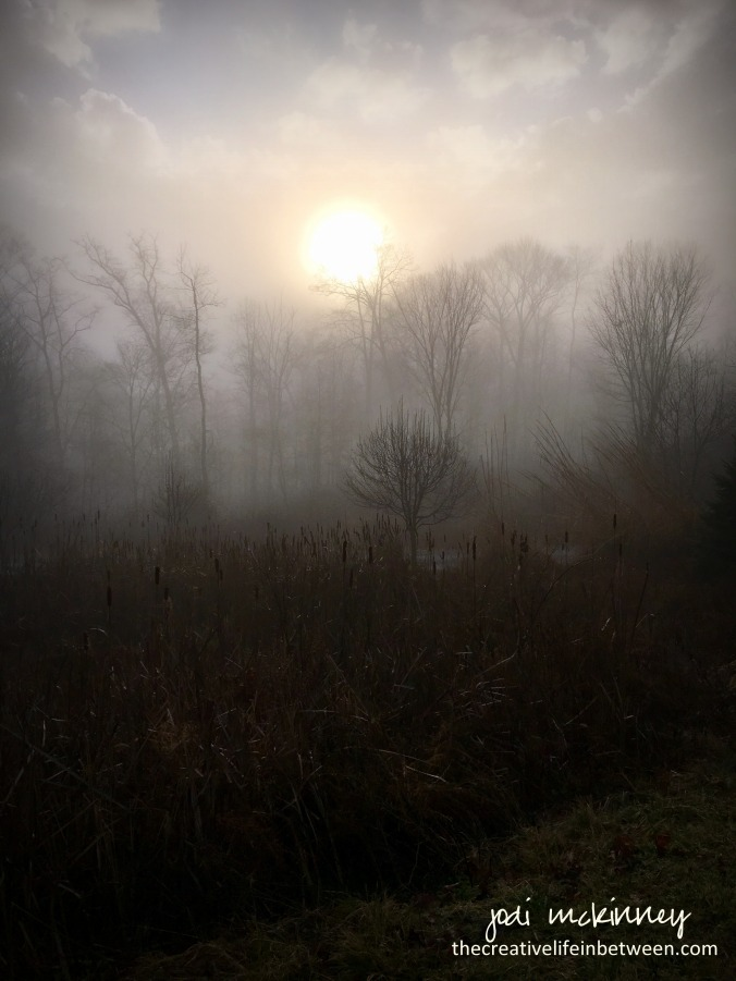 misty-morning-mars-pa-0117