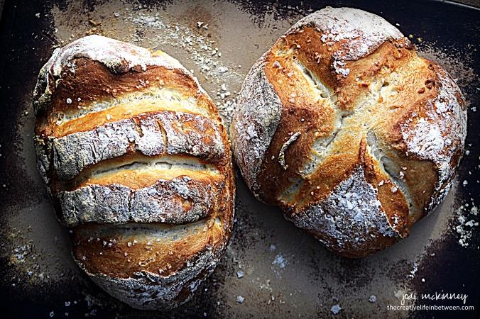 bread-5-minute-rustic-artisan-bread-2