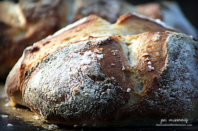 bread-5-minute-rustic-artisan-bread-3