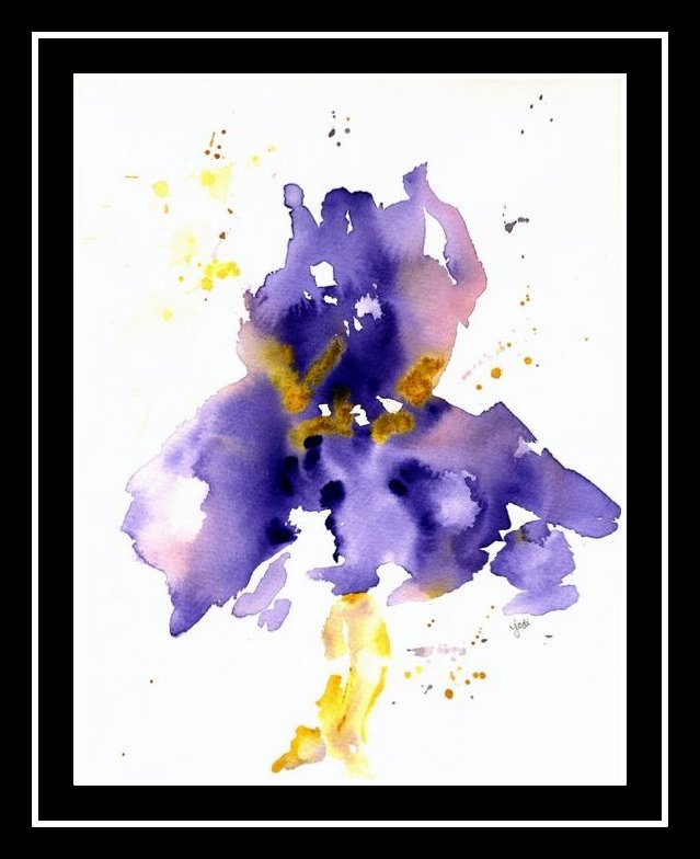 purple-iris-2-black-border-matted