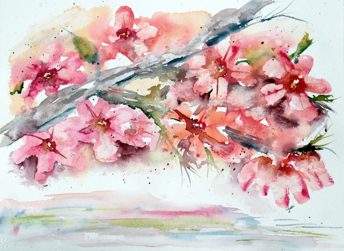 Pink Dogwood Blossoms Watercolor - 11x14 140lb Cold Press Saunders