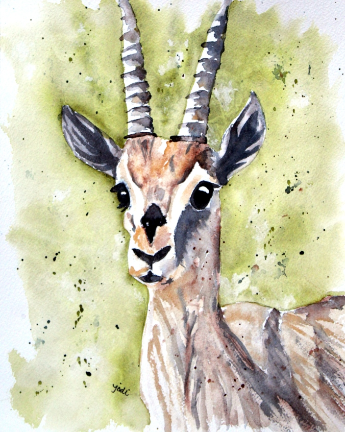 Adele the Gazelle Watercolor 8x10 140lb Arches Cold Press