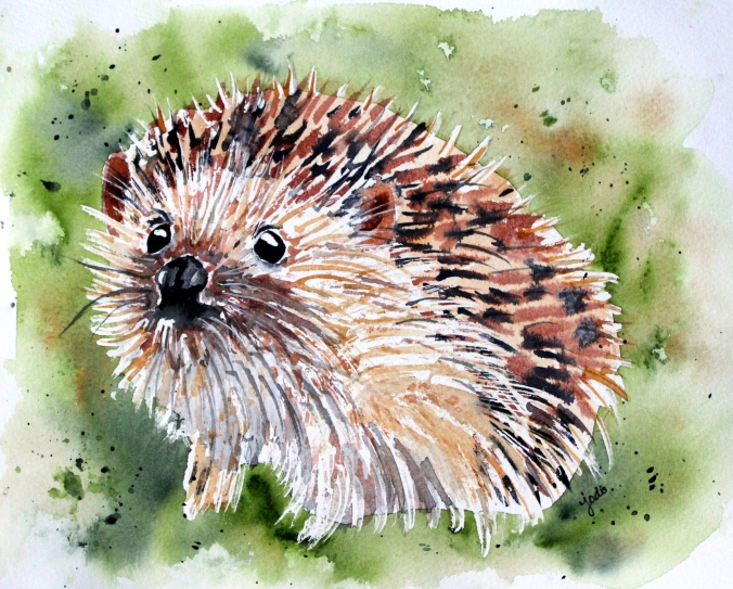 Hedy the Hedgehog Watercolor 8x10 140lb Arches Cold Press