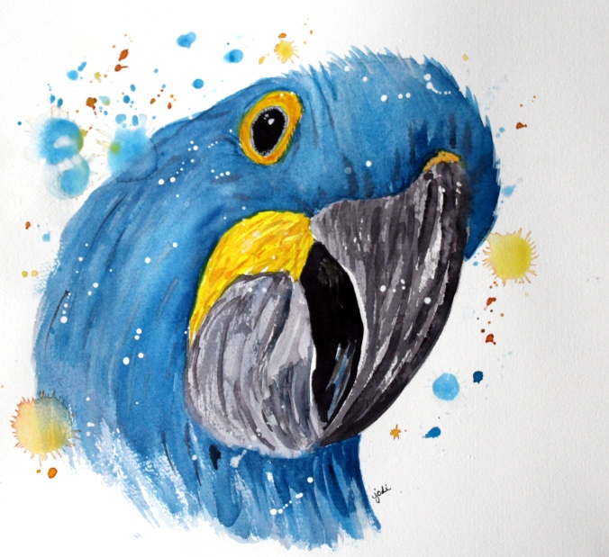 Blue Parrot Watercolor 11x13 140lb Saunders Waterford Cold Press